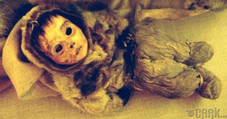 Гренландын хүүгийн мумми (Килакитсок)