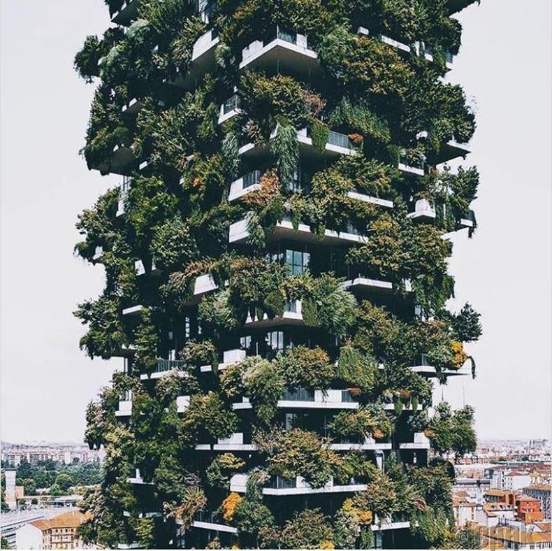 Бетоноор байшинг ингэж барина