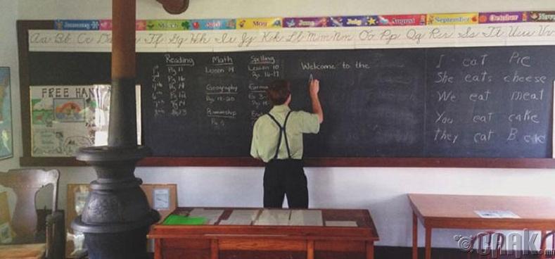 Багш нар нь ямар вэ?