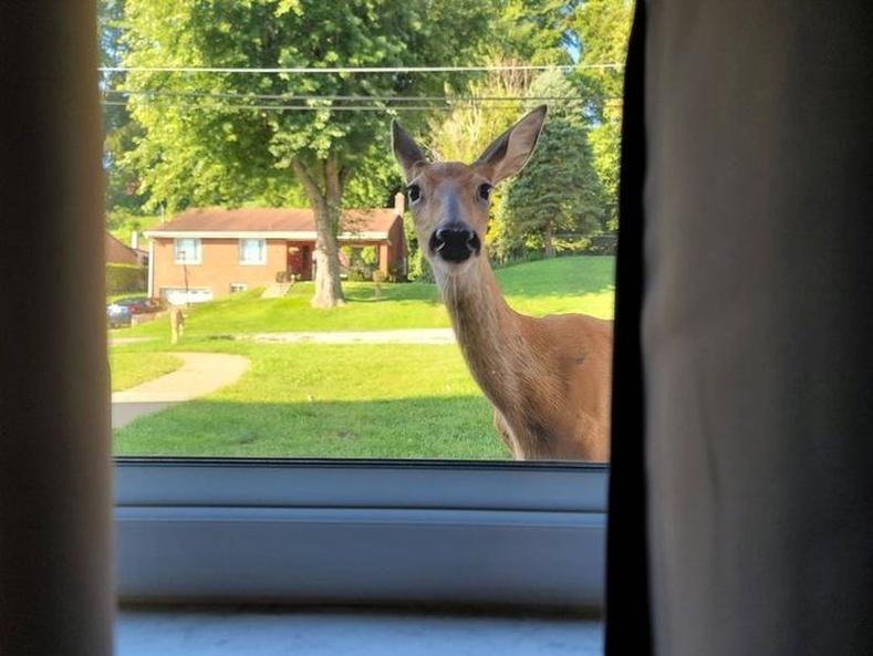 """""""Ажилдаа төвлөрч байгаад цонхоор нэг хартал"""""""