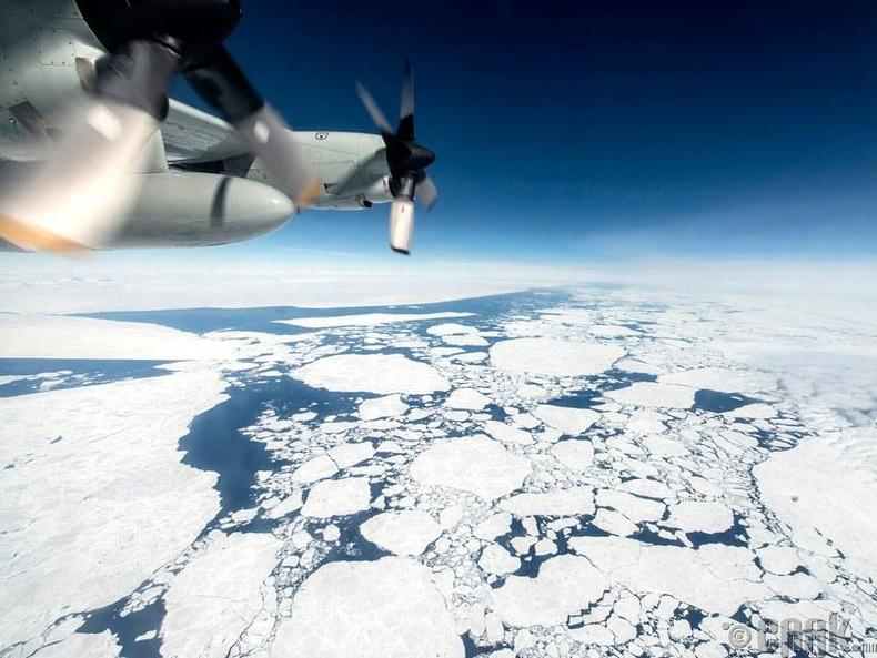 Мөсөн хавтангуудыг агаараас харвал
