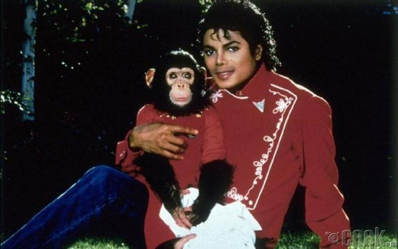Майкл Жексоны сармагчин