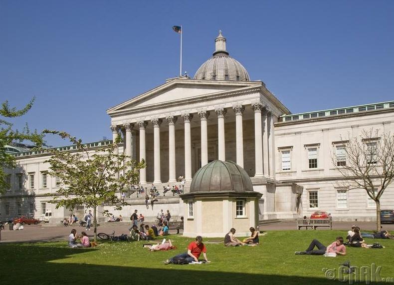 """""""University College London"""", Их Британи - 95.6 оноо"""