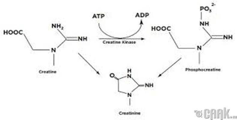 Кератин - фосфатын урвал