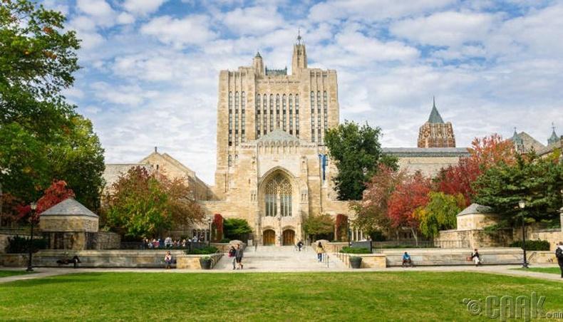 Йелийн Их Сургууль (Yale University)