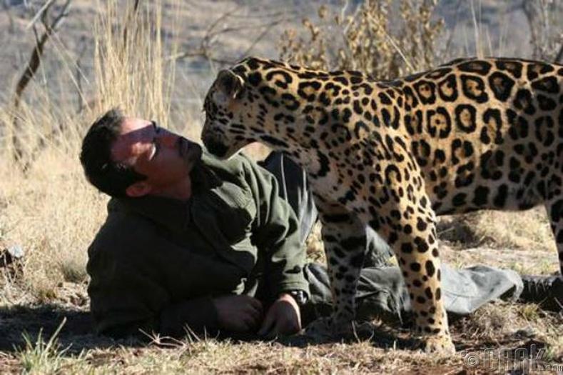 Амьтантай нөхөрлөгч