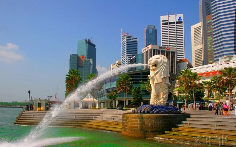 Сингапур - 81.9%