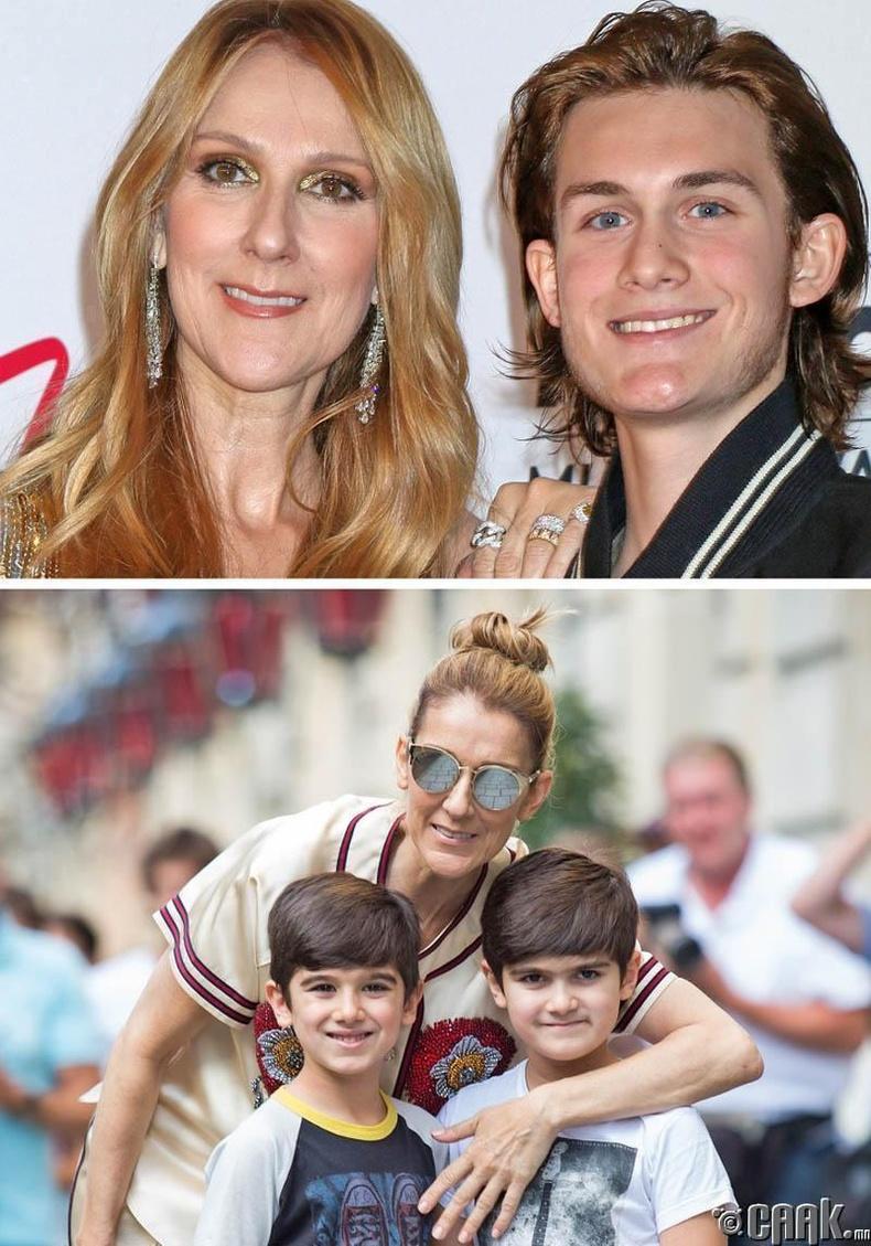 Селин Дион (Celine Dion)  анхны хүүхдээ 33-тай төрүүлж, 42 насандаа ихрүүдтэй болжээ