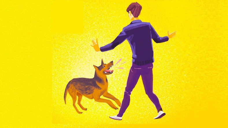 Нохой дайрвал яах ёстой вэ?