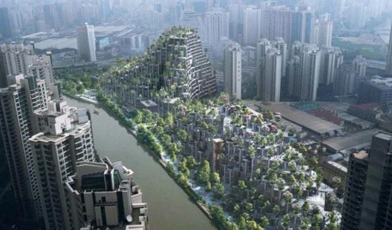 """""""Мянган модтой байшин"""" - Хятадад хэрэгжиж буй ер бусын эко төсөл"""