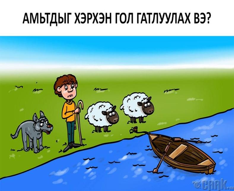 Амьтдыг хэрхэн гол гатлуулах вэ?