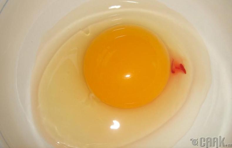 Өндөгний чанар шалгах