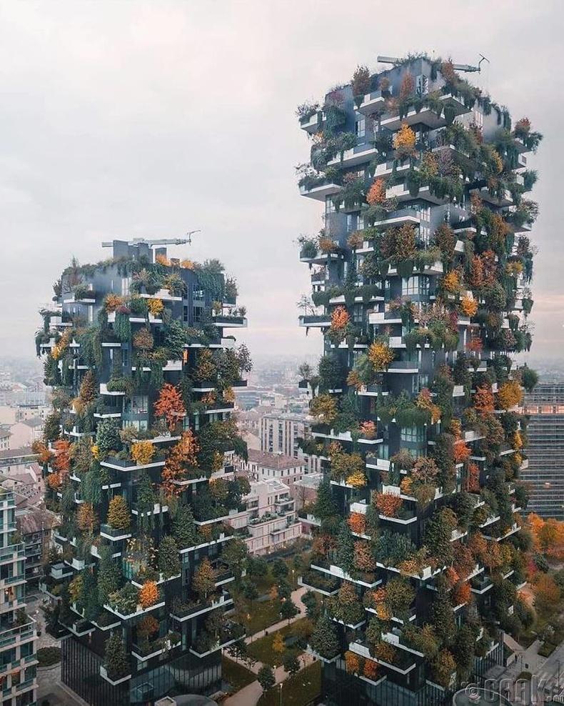 Миланы шинэ ой - Гэрэл зурагчин Себестиан Наги (Sebastien Nagy)