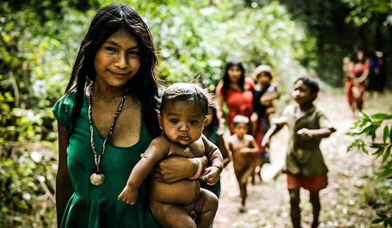 Өнгө, тоо мэддэггүй, цаг хугацааны ойлголтгүй амьдардаг Амазоны Пираха омог