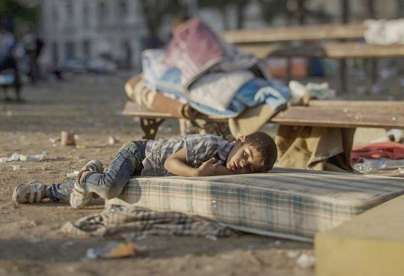 Дайны золиос болсон Сири хүүхдүүд