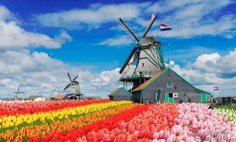 Голланд бол улс - Худал