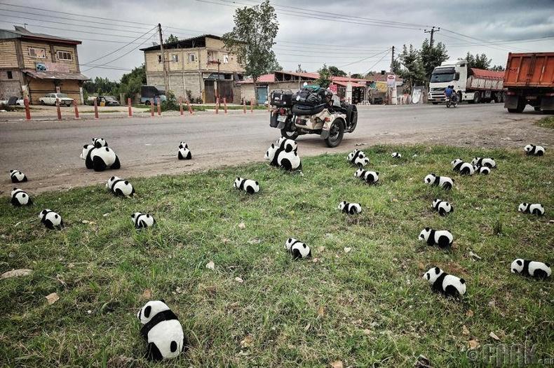 Ираны гудамж дахь панданууд
