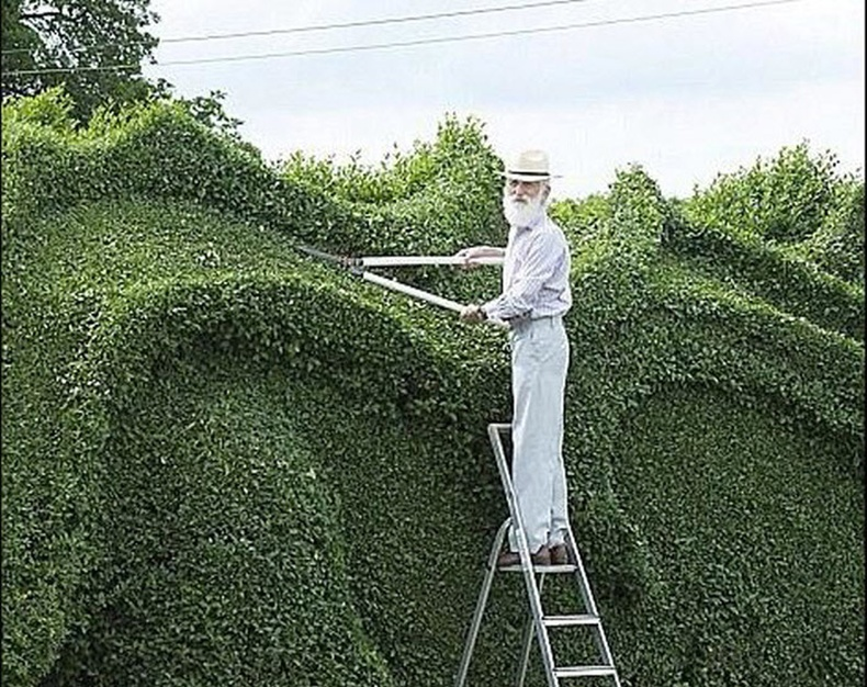 Луу хэлбэртэй цэцэрлэг бүтээхийн тулд 10 жил царцуулсан эр