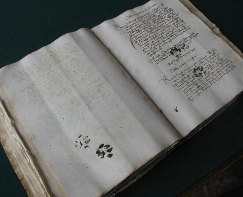Дундад зууны үеийн ном дээр үлдсэн муурын сарвууны мөр
