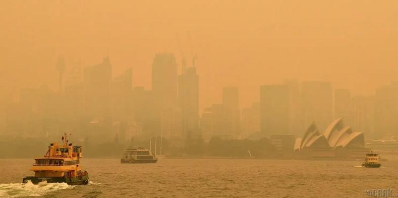 Түймрийн утаа Сиднейд