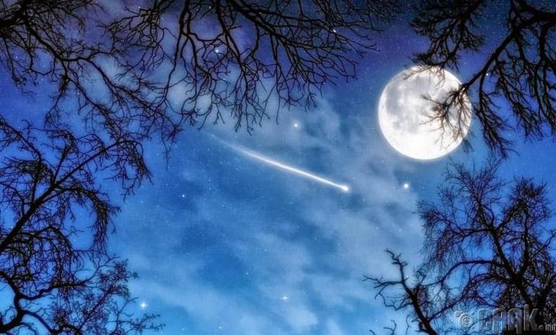 Үр суулгагч харваж буй од
