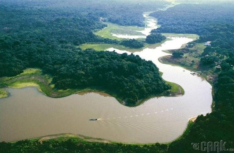 Амазон мөрөн, Өмнөд Америк