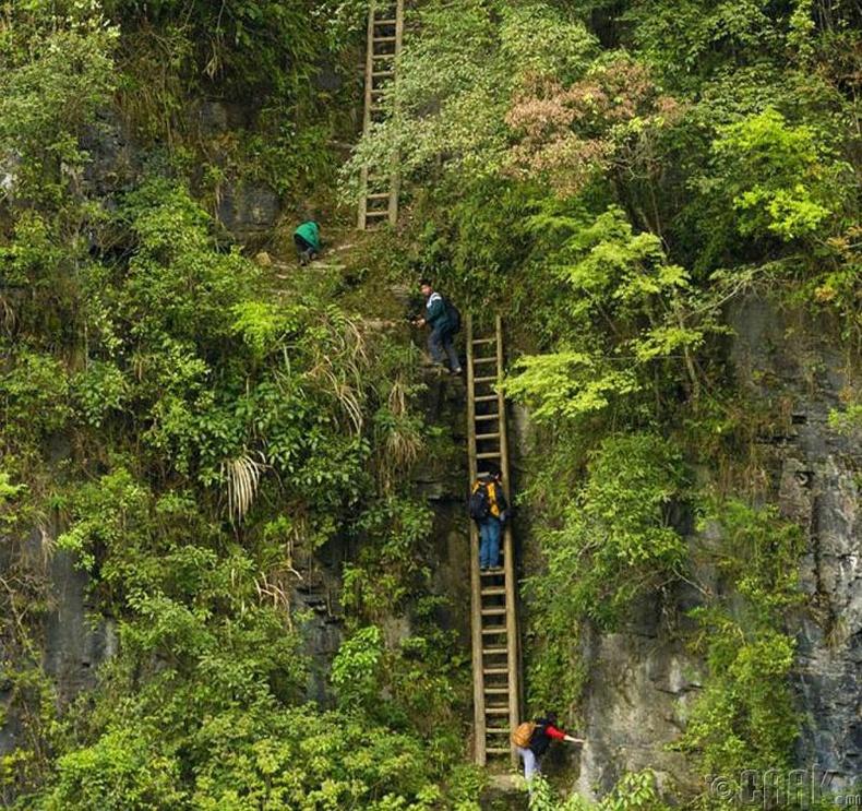 Хятадын Жан Жиаван тосгонд хүүхдүүд модон шатаар уул өөд авирч хичээлдээ явдаг