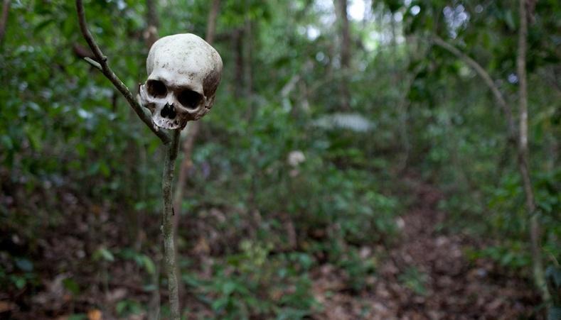 Очсон хүн бараг эргэж ирдэггүй дэлхийн хамгийн аюултай ширэнгэн ой
