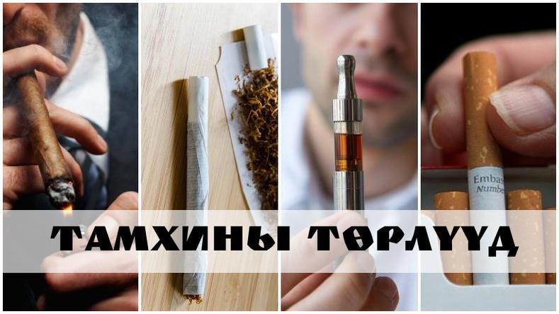 Тамхины төрлүүд ба  тэдгээрийн хор хөнөөл