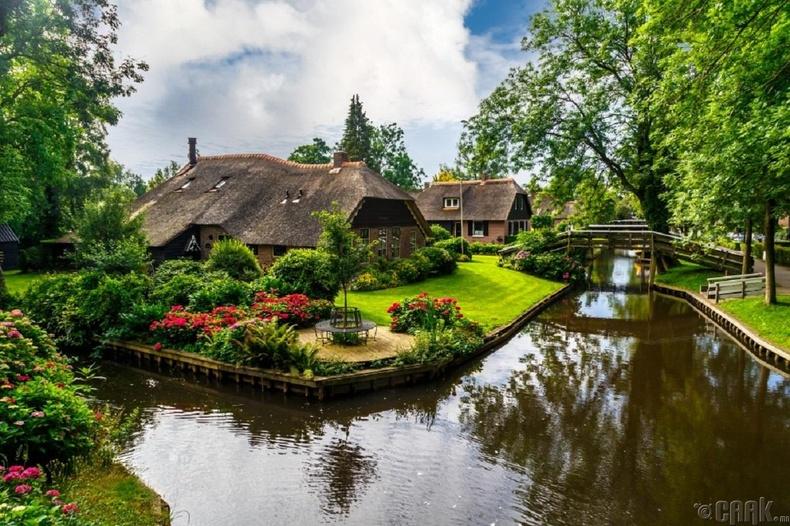 Данийн Венец Гитүүрн, Недерланд