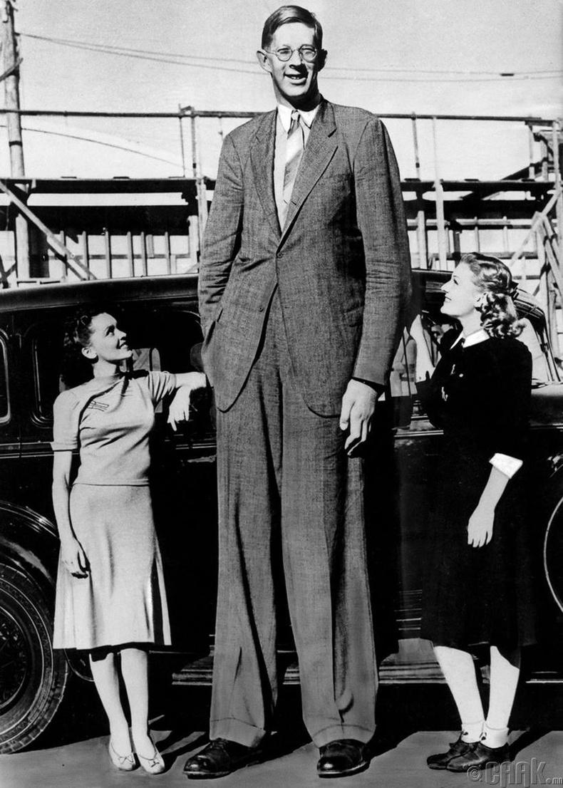 Түүхэн дэх хамгийн өндөр хүн Роберт Вадлоу (272 см) - 1939 он