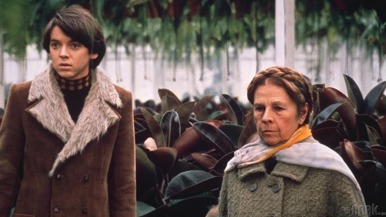 """""""Харольд, Мауд хоёр"""" (Harold and Maude) - 1971 он"""