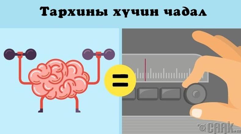 Тархины хүч