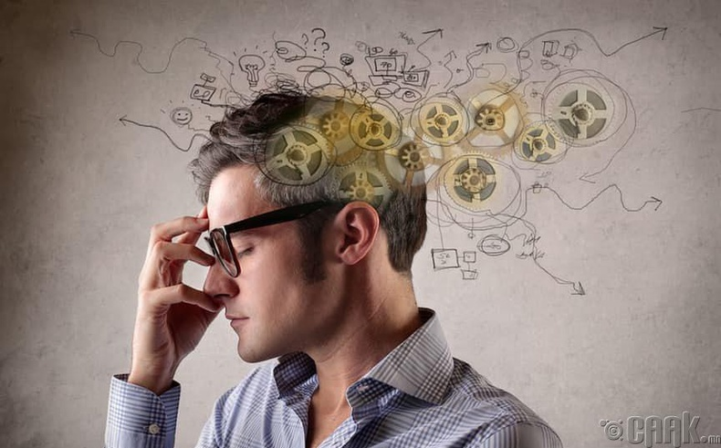 Тархины үйл ажиллагаа