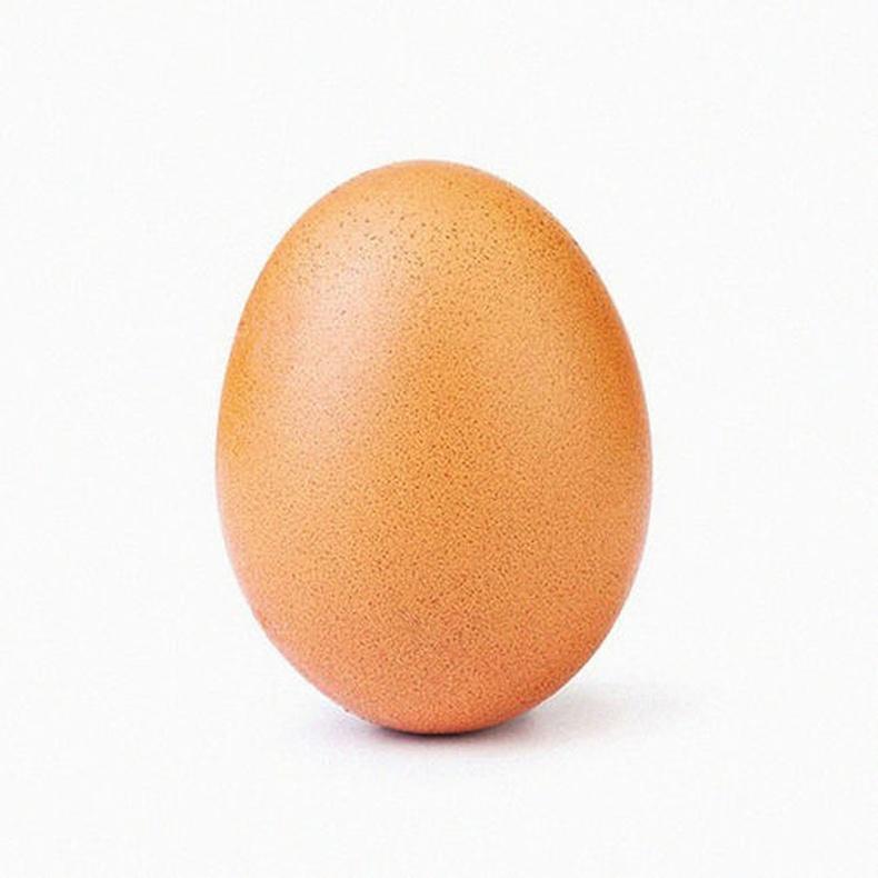 Тахианы өндөг - 54.8 сая