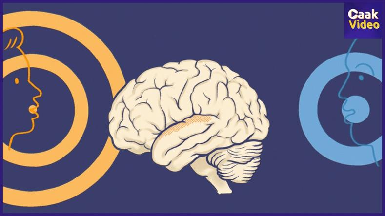 Таны тархийг чимээгүйгээр хөнөөж байдаг 6 зүйл