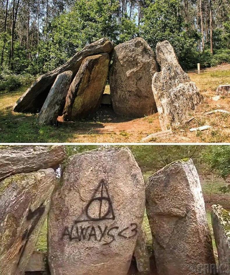 Харри Поттерын фэнүүдийн бүдүүлэг үйлдэл