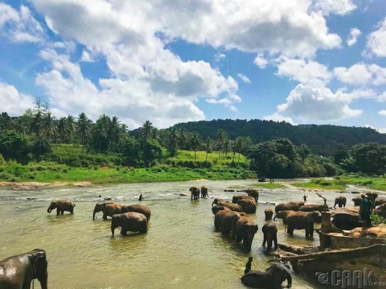 Цейлон - Шри-Ланка
