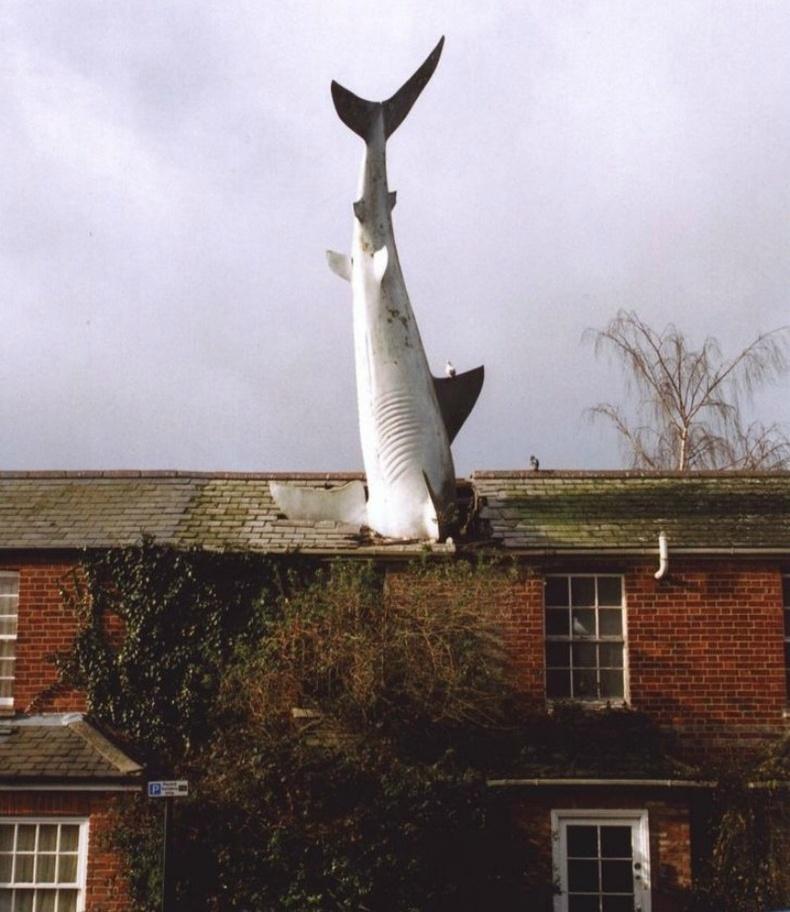 Аварга загастай байшин, Их Британи, Оксфорд