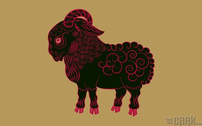 Хонь жилтнүүдийн зан араншин