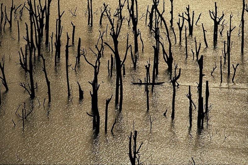 Коссоу гол дээрх загасчин - Зааны ясан эрэг