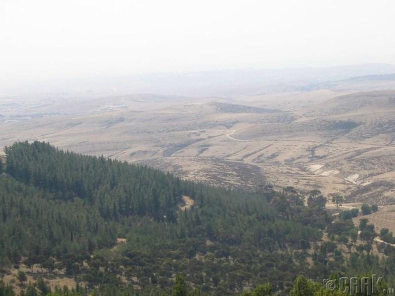 Хеврон уул, Палестин