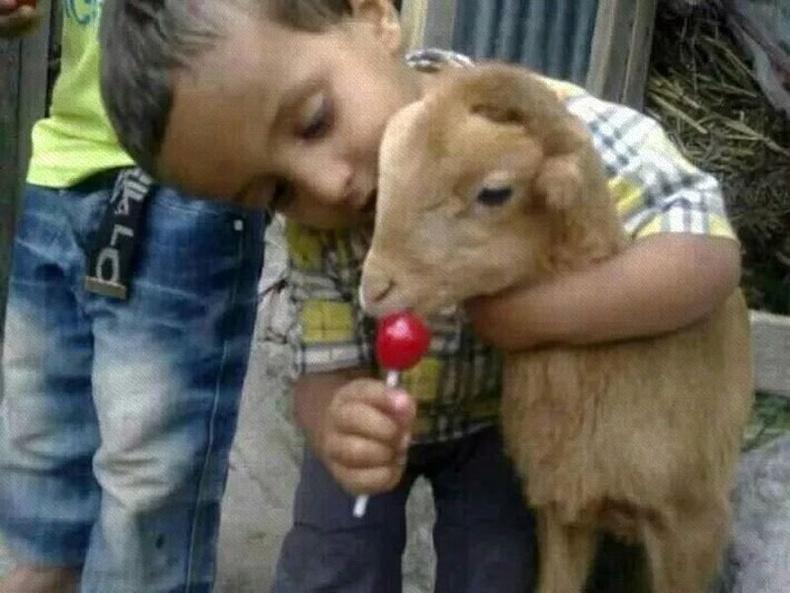 Гэнэн цайлган мөртлөө том ертөнц хүүхдийн зүрхэнд бий