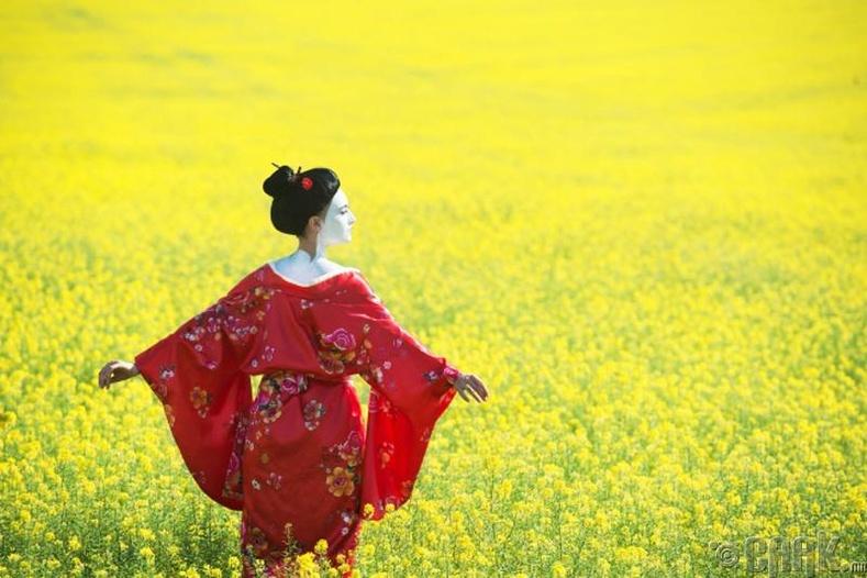 Япон: Хэзээ ч үгүй гэж хэлдэггүй