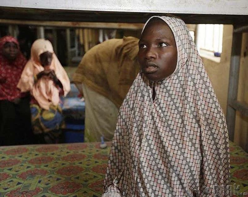 Охидын бэлгийн бойжилтыг хянах (Нигер)