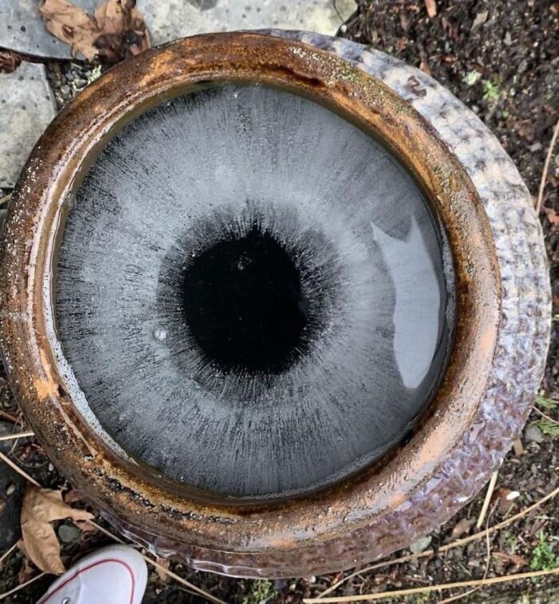 Энэ бол нүд биш харин зүгээр л мөс