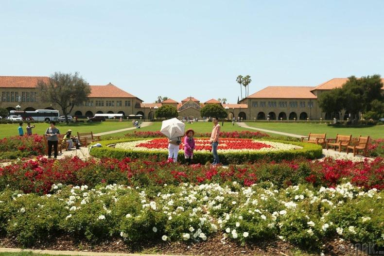 Стэнфордын их сургууль