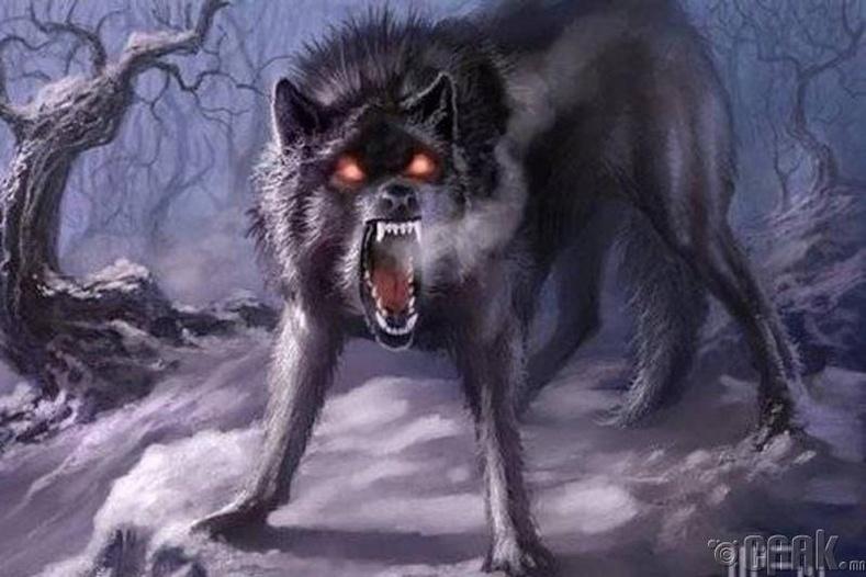 Аймшигт чоно