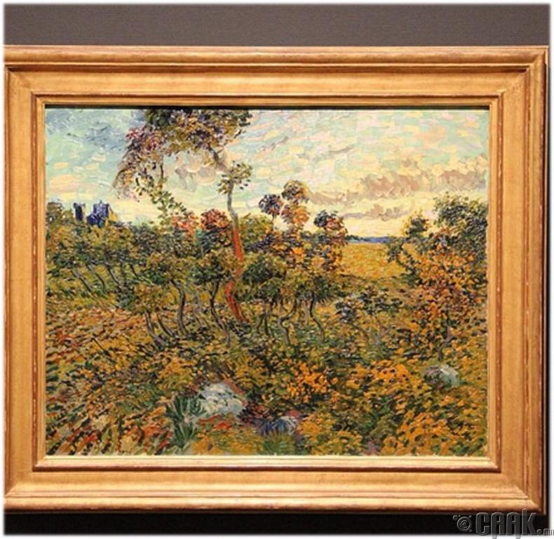 Дээвэр дээр мартагдсан Ван Гог