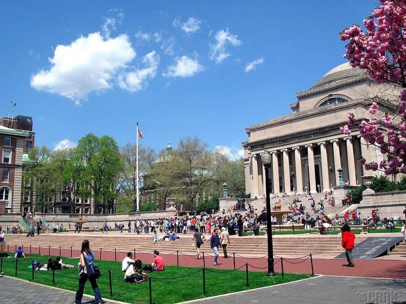 Колумбын их сургууль, АНУ (86.1)